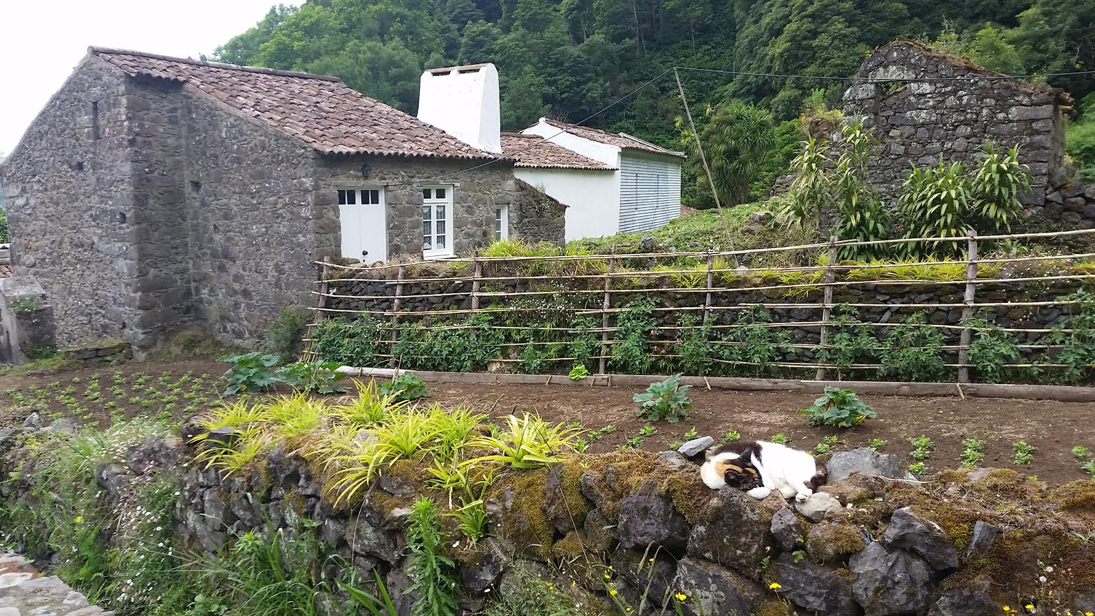 Sanguinho old house